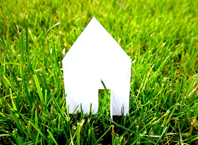 house cut-out on grass