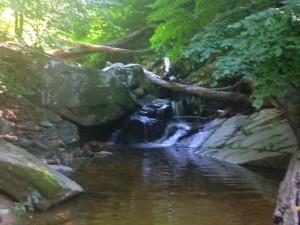 One of Marcy Park's swimming holes, in Arlington, Va