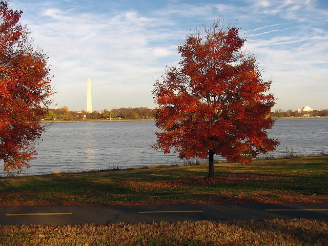 5 things to do in Washington DC Metro Area this October